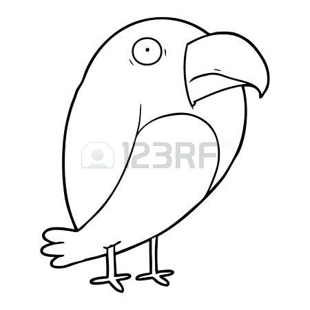450x450 Simple Crow Drawing Magpie Crow Illustration Vector Bird Color