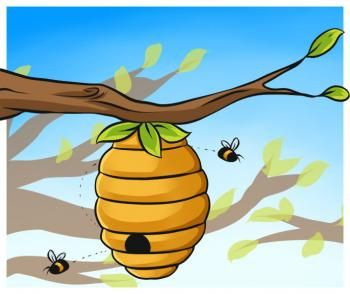 350x294 how to draw a beehive drawing beehive drawing, beehive cartoon