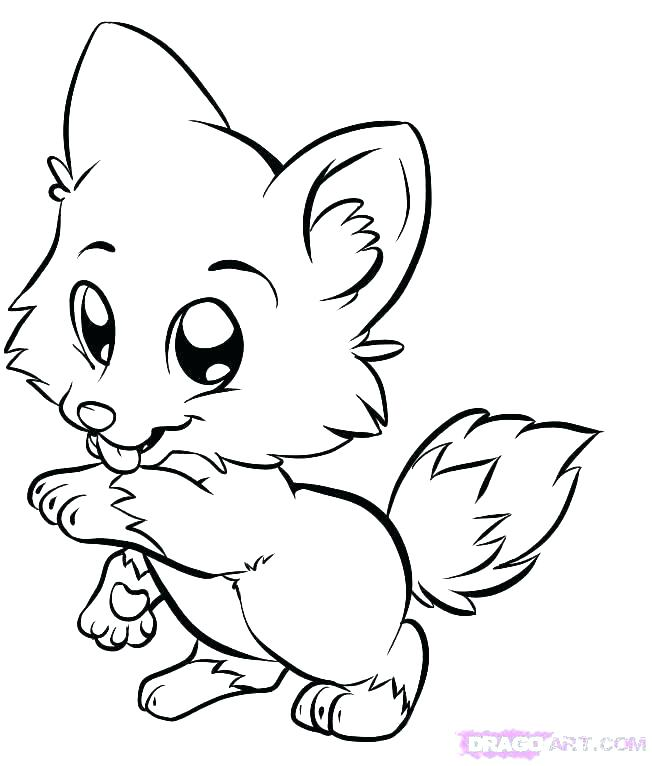 652x766 Baby Drawing Arctic Fox For Free Download