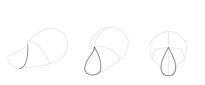 700x289 How To Draw A Fox Step