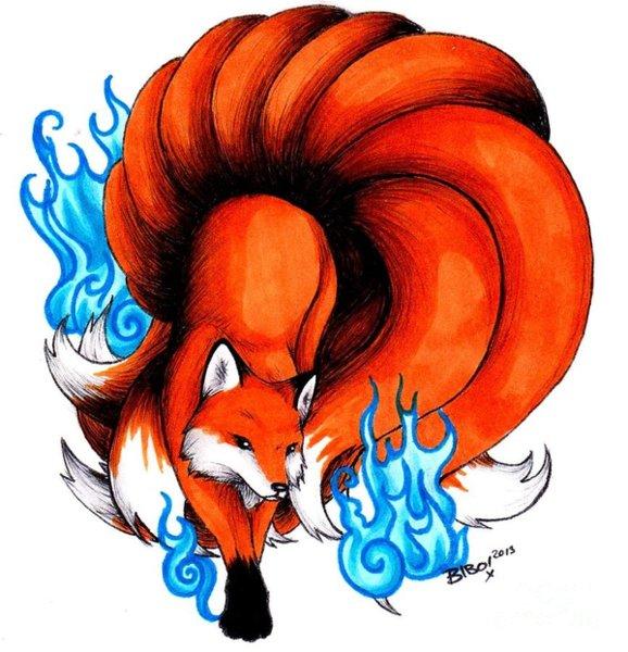 578x600 Fox Tail Drawings Fine Art America