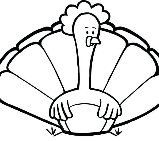 678x600 turkey drawing pictures whole roast turkey tom turkey drawing