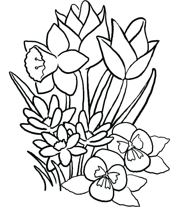 615x741 tropical flowers stained glass coloring book hand drawn tropical