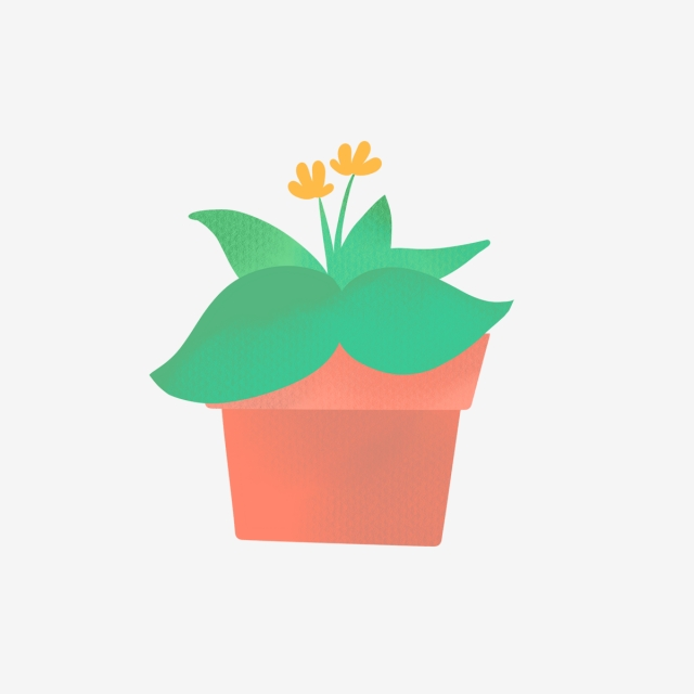 640x640 hand drawn cute home plant with flower, nature, hand drawn