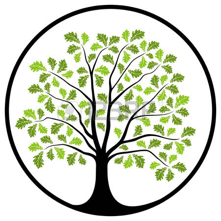 450x450 Free Clipart Line Drawing Live Oak Tree Collection