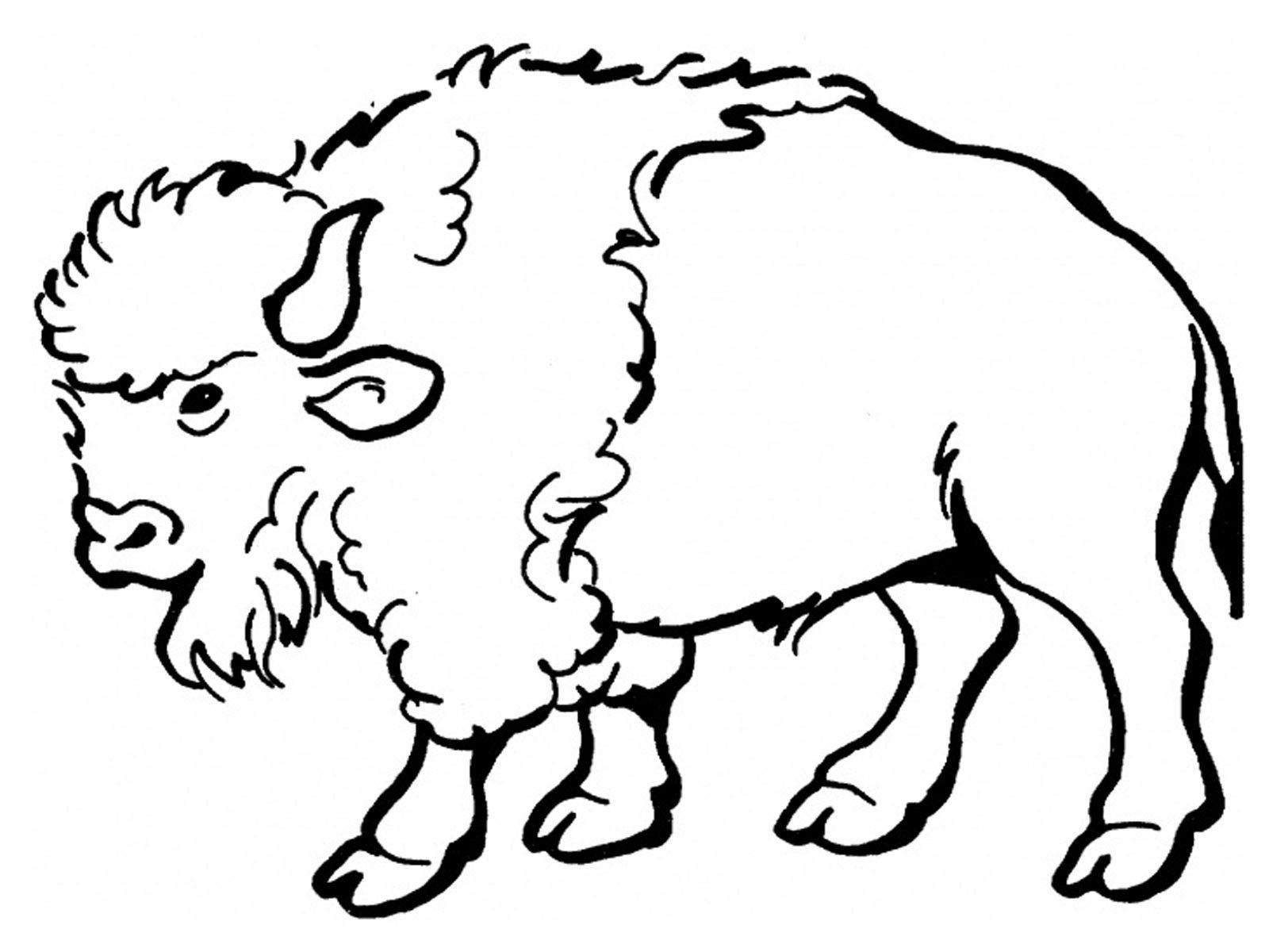 1600x1200 Buffalo Drawing For Kids And Buffalo Drawing For Kids Free