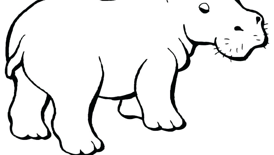 960x544 Coloring Sea Animal Hippo Pages Baby Cute Hippopotamus Cartoon