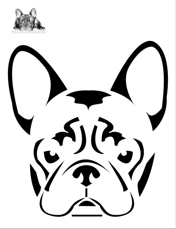 736x954 pumpkin carving stencils for dogs animal bug stencils dog