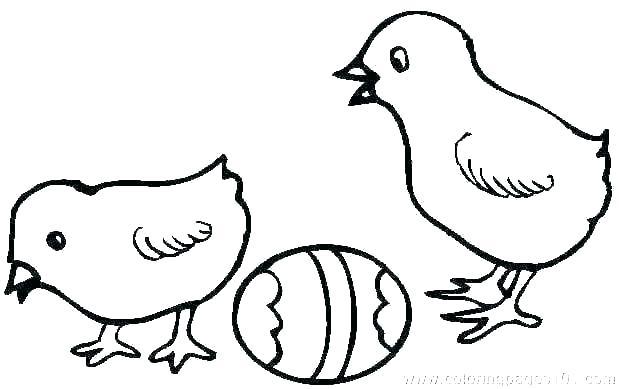 619x389 Hen Coloring