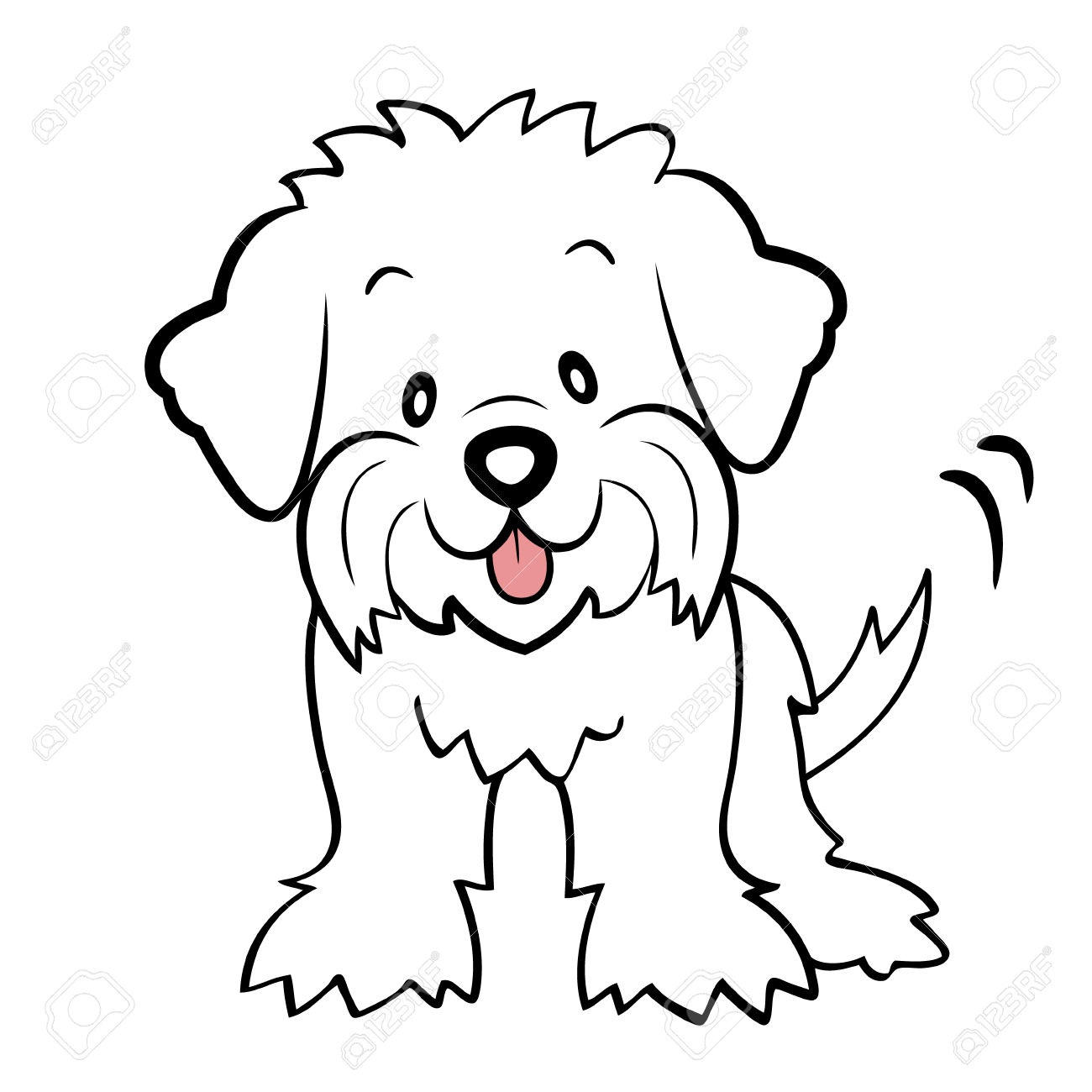 French Poodle Drawing