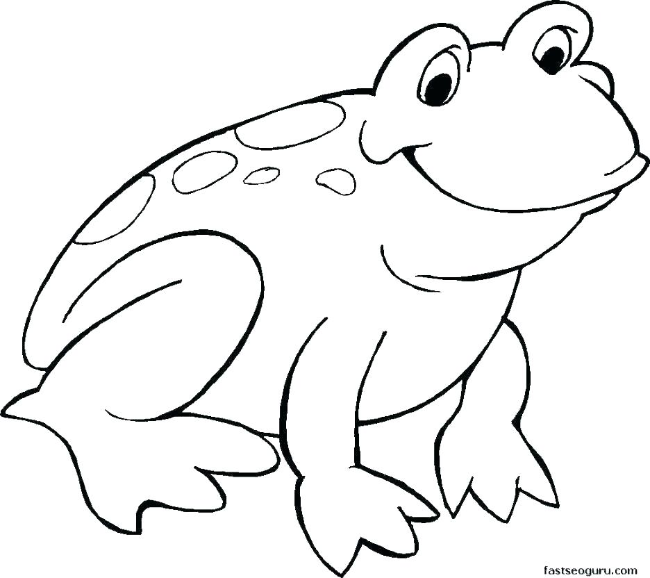936x832 Coloring Pages Draw A Toad Easy Cartoon Frog Drawing How To Draw
