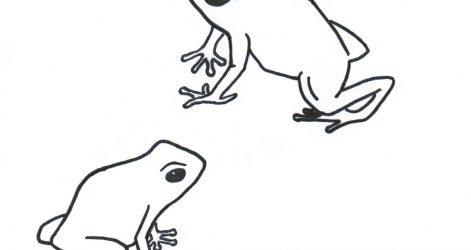 471x250 Drawing Easy Flowers Cartoon Rose Tree Frog Step