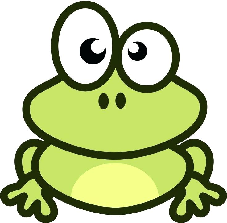 736x723 Easy Frog Easy Easy Frog Pictures To Draw Savvysmoke Club