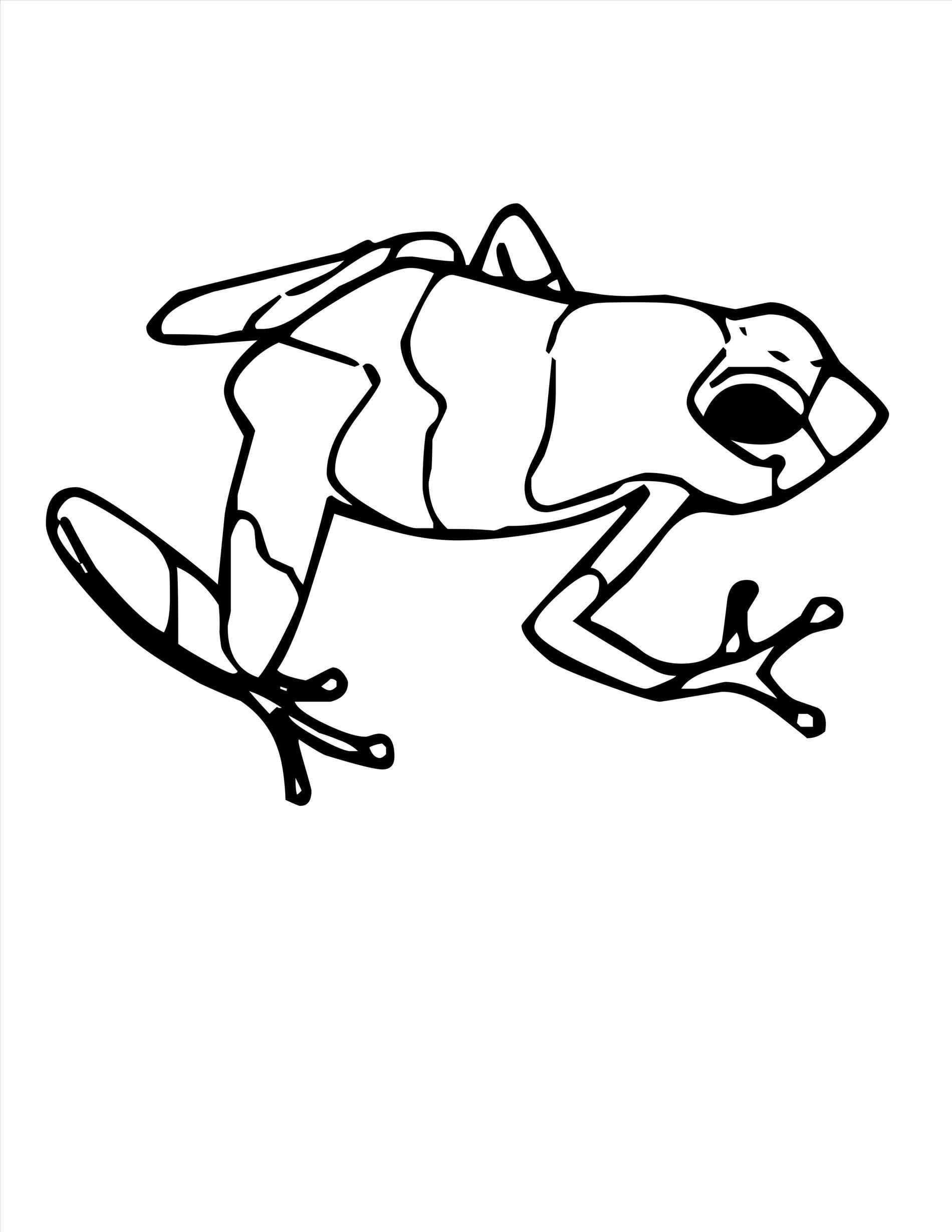 Frog Jumping Drawing