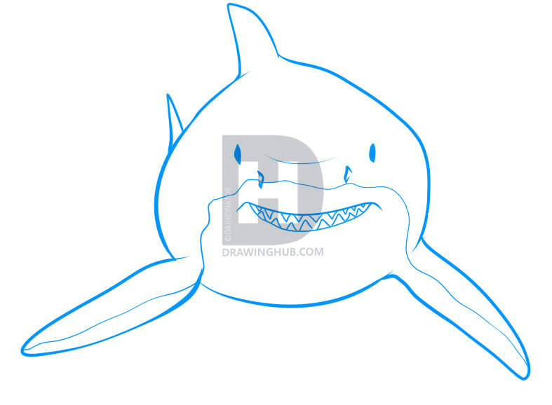 787x578 How To Draw A Shark, Step
