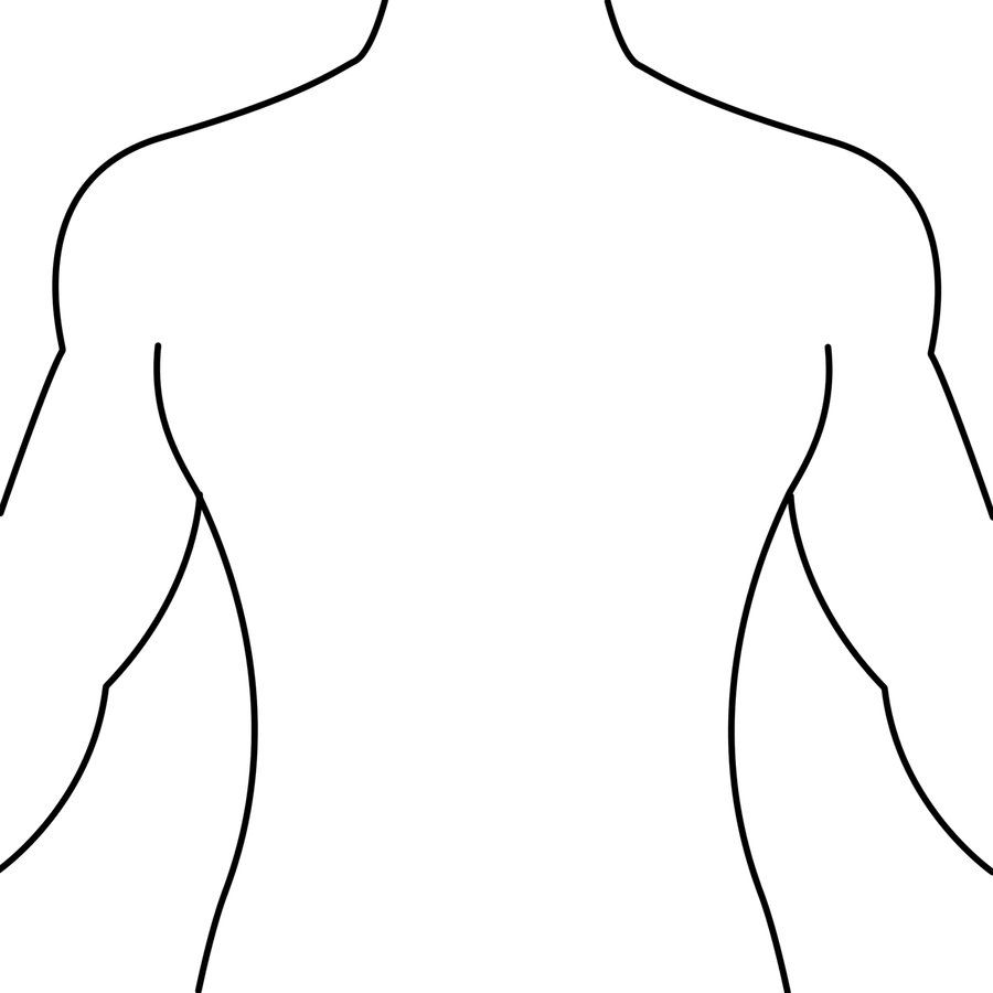 900x900 Human Body Outline Front And Back Drawing