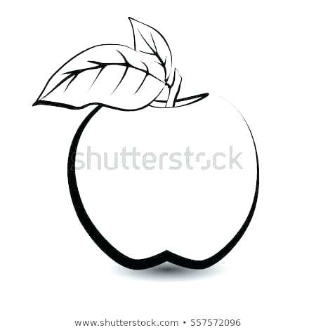 450x470 How To Sketch Fruit Start Drawings Fruits Vegetables