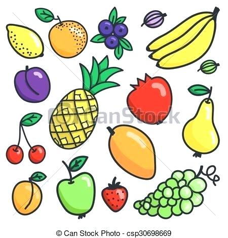 450x470 Drawing Of Fruit Still Life Fruit Basket Drawing Fruits Name