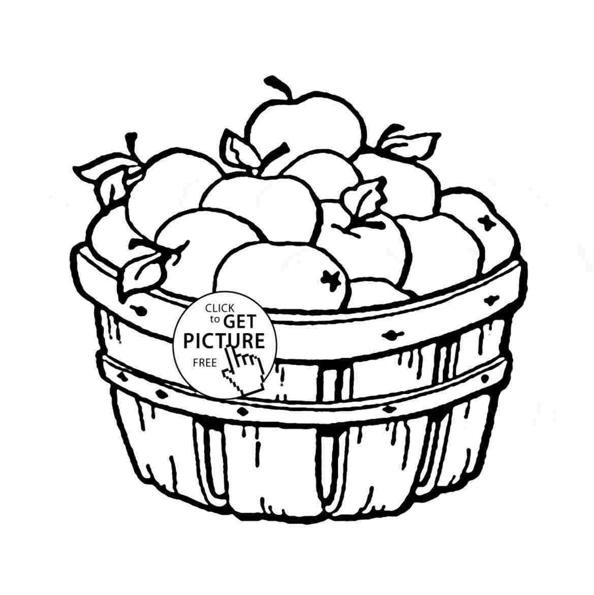 1169x1172 Fruit Basket Drawing For Kid