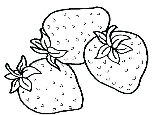 498x373 Coloring Pages Of Fruit Coloring Pages Of Fruits Apple Coloring