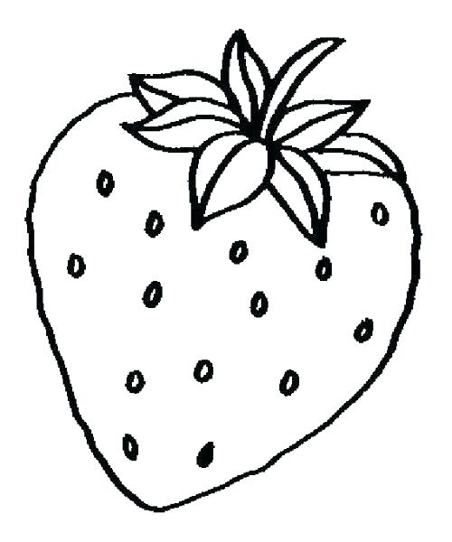 500x600 Fruits Drawing Pictures Fruit Easy Drawings Fruits Zupa