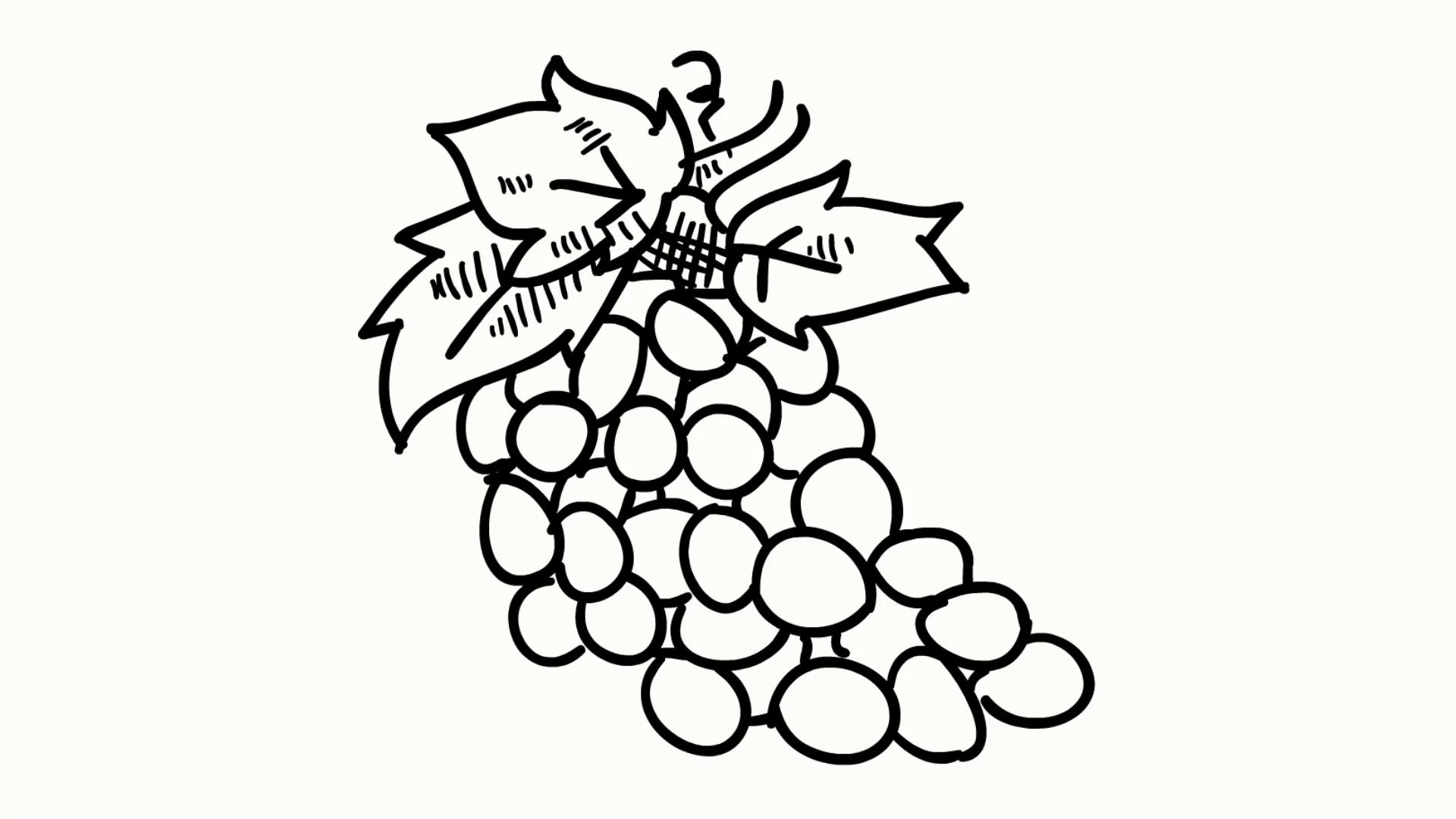1920x1080 Grapes Fruit Food Line Drawing Illustration Animation Transparent