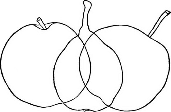 550x363 Apple And Pear Fruit Culturist Line Drawing, Posters
