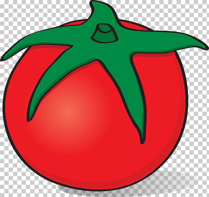 728x688 fruit tomato vegetable drawing tomato png clipart free