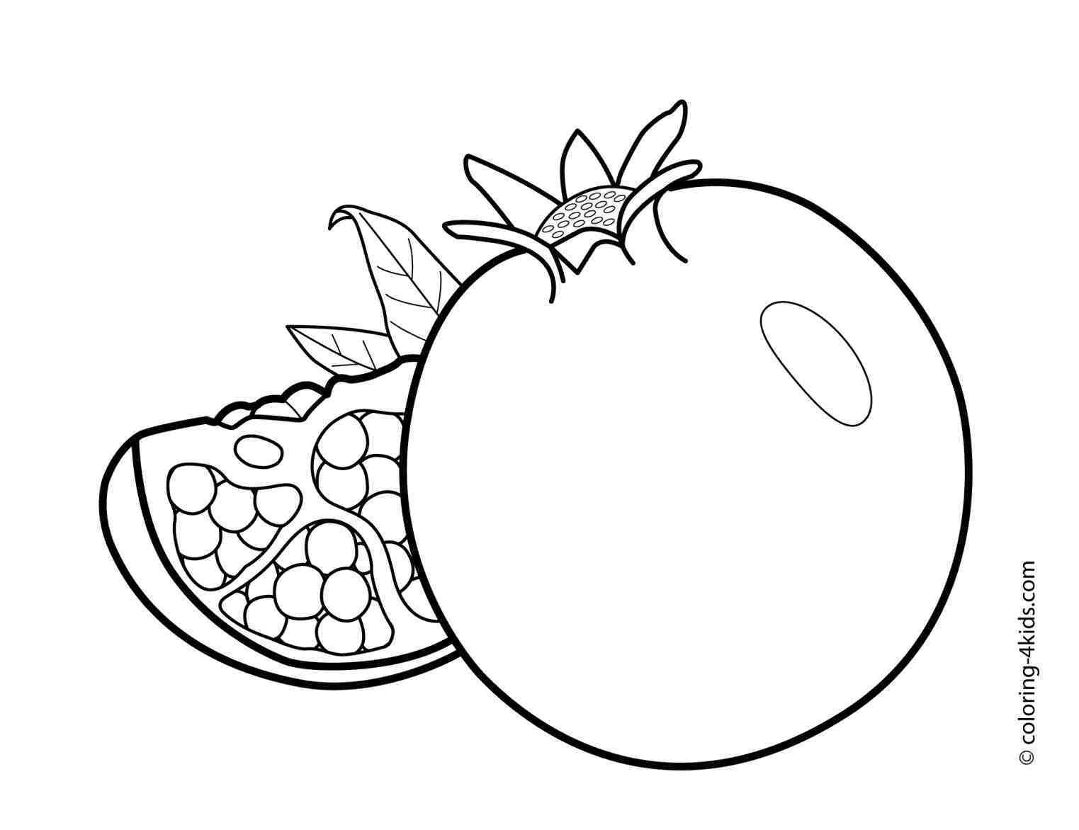 1523x1172 drawing easy vegetables art healthy how to draw vegetables