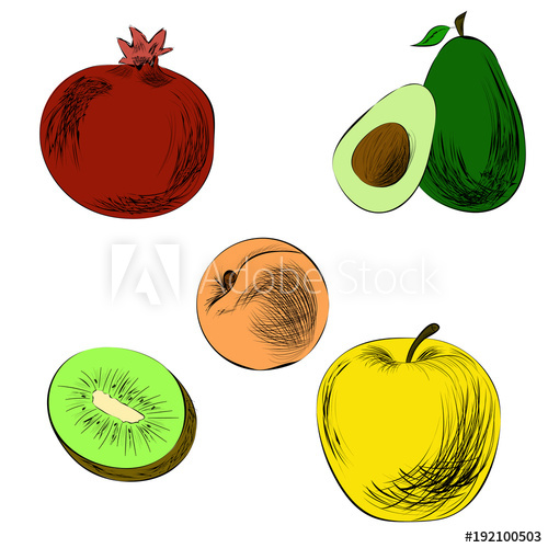500x500 Hand Drawn Fruits In Color Pencil Drawing Pomegranate, Apple