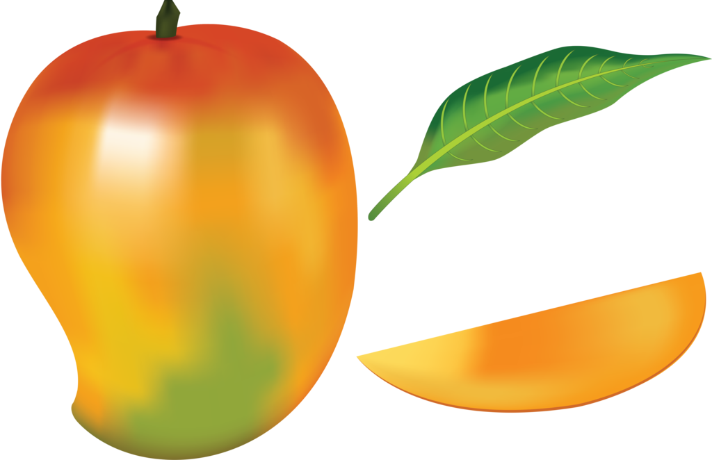 1024x662 Drawing Fruit Mango Huge Freebie! Download For Powerpoint
