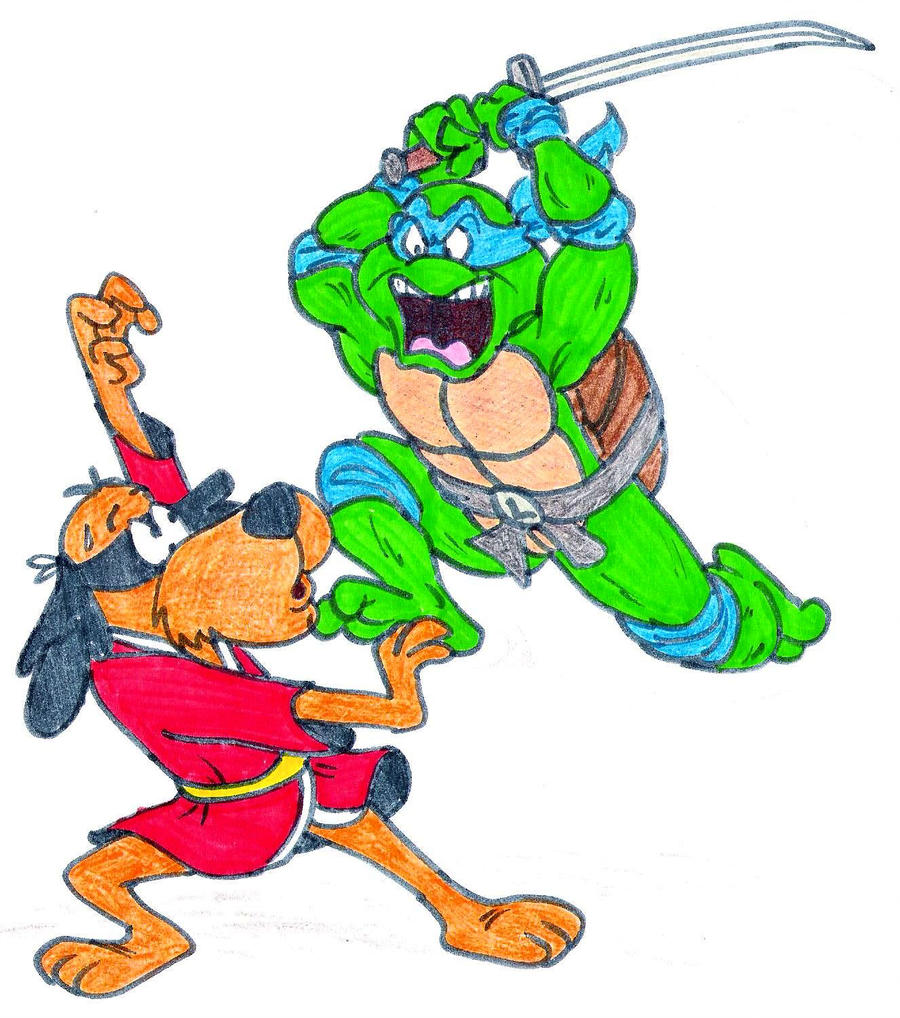 900x1018 Kung Fu Dog Vs Ninja Turtle