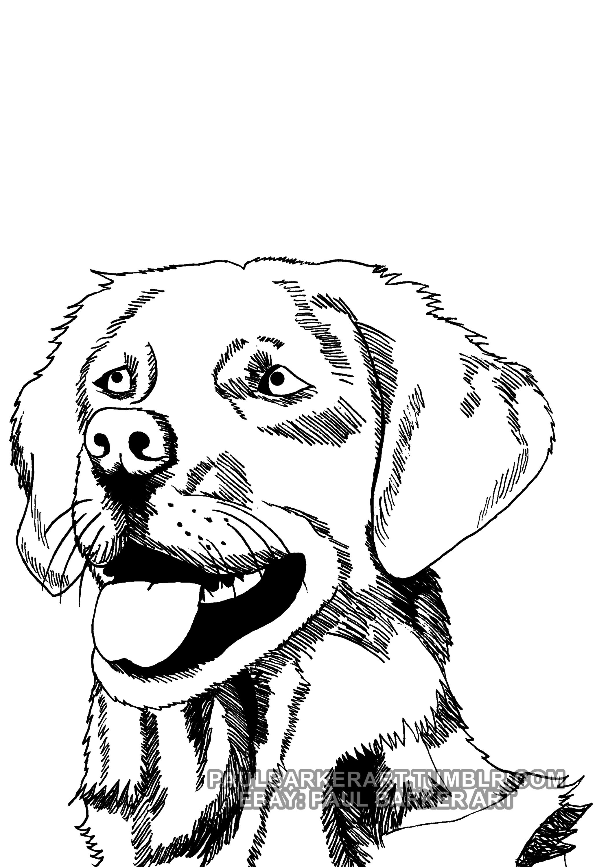 2064x3000 Doggo Drawing For Free Download