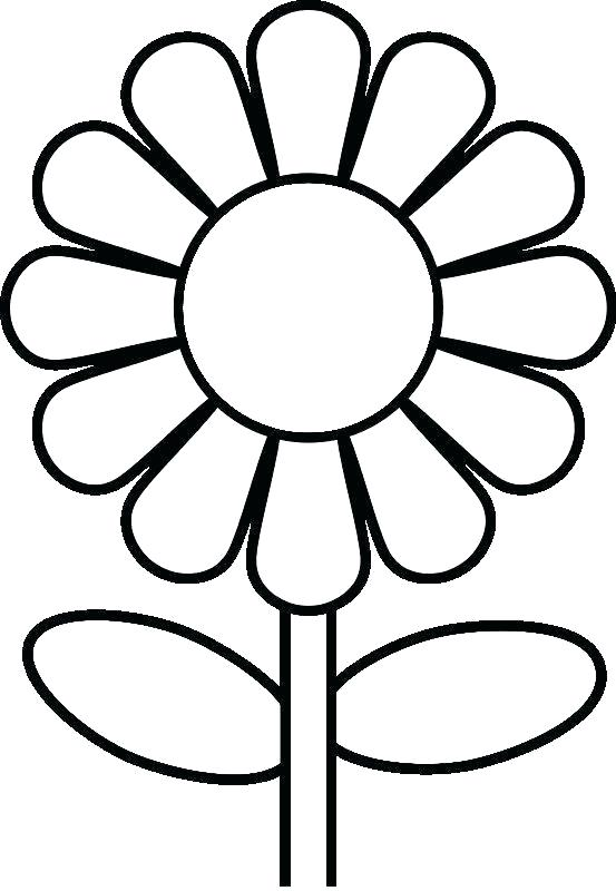 553x800 Drawing Pages Of Flowers Full Size Of Coloring Pages Flowers