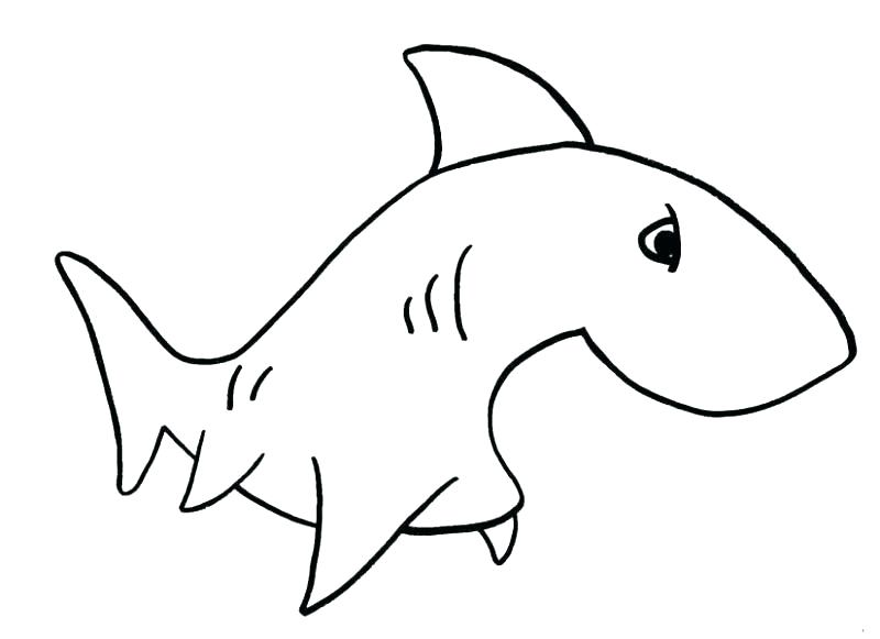 800x581 Simple Drawing Fish Free Simple Fish Drawing Free