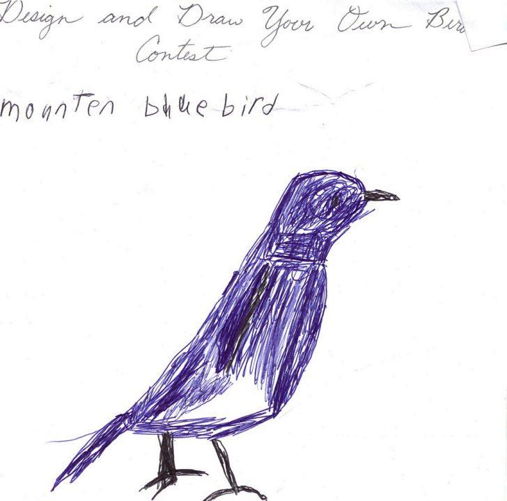 728x720 Bird Box Creature Drawings Reddit Funny Cartoon On Branch Cute