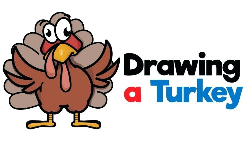 847x502 Cartoon Turkey Drawing Chef Cartoon Turkey Funny Turkey Cartoon