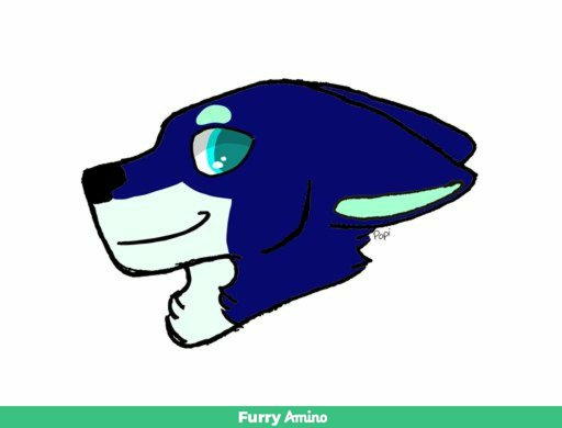 Furry Wolf Drawing | Free download best Furry Wolf Drawing