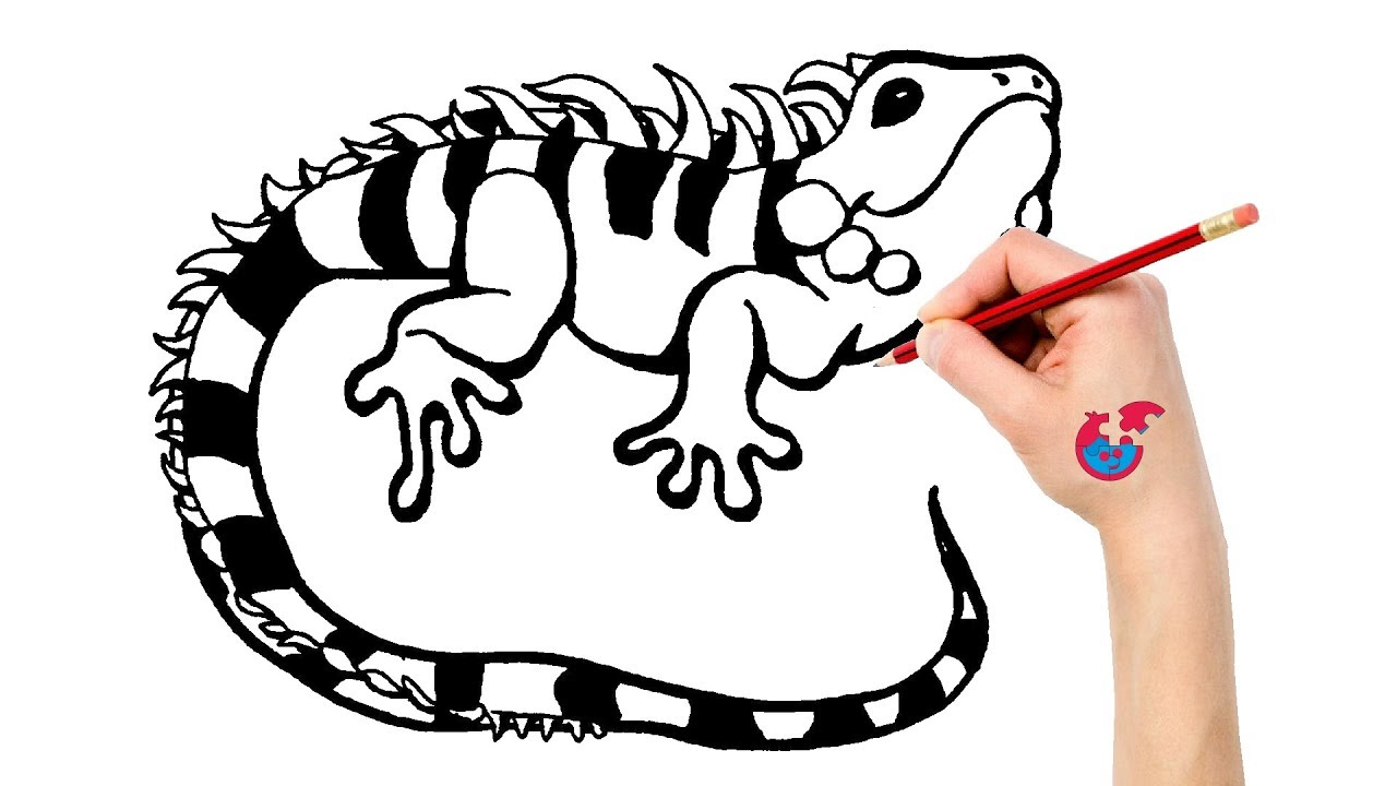 Gecko Drawing Free Download Best Gecko Drawing On Clipartmag Com