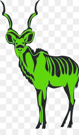 260x440 gemsbok east african oryx antelope arabian oryx fringe eared oryx