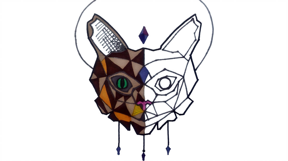 1192x670 Geometric Cat Face Half Color
