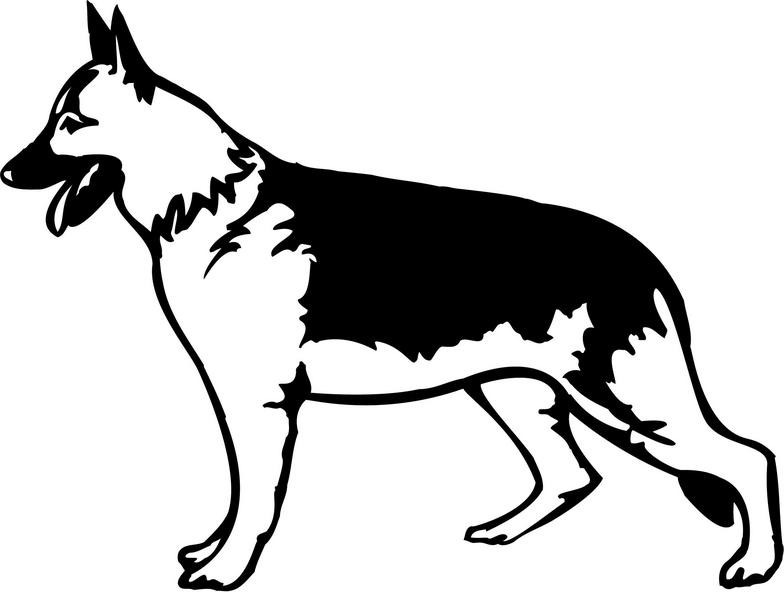 784x592 how to draw a german shepherd how to draw a german shepherd puppy