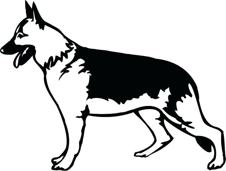 784x592 german shepherd pictures to print shepherd face drawing at free