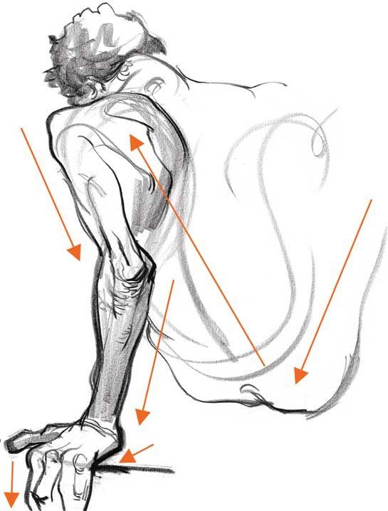 545x718 Image Result For Different Gesture Pose Anatomy Anatomy