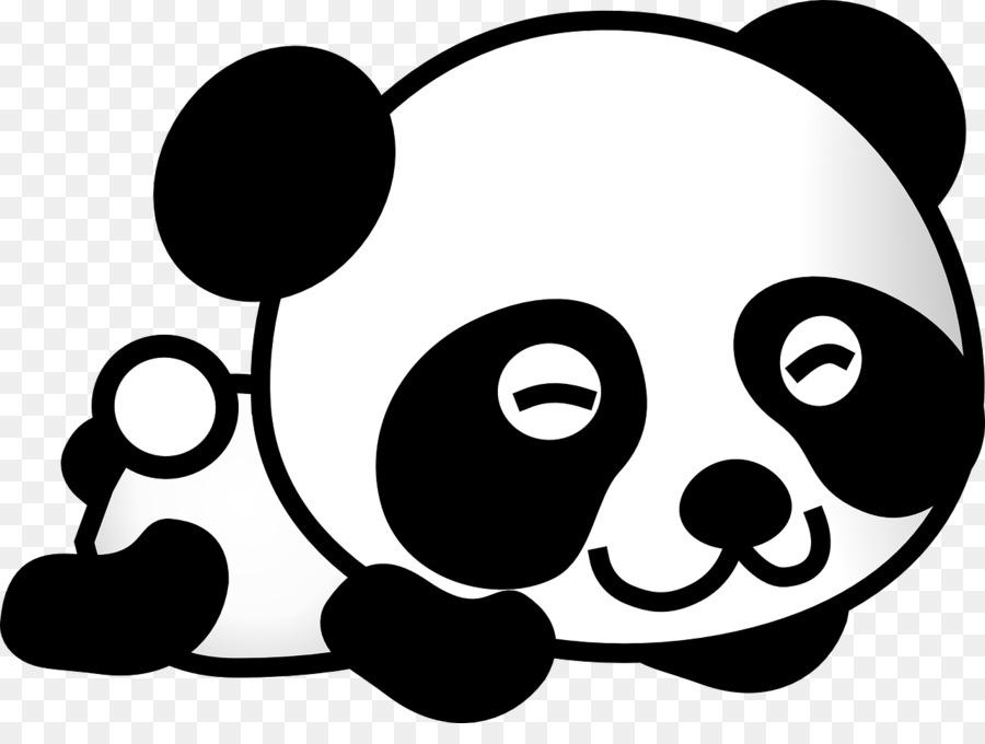 Giant Panda Drawing