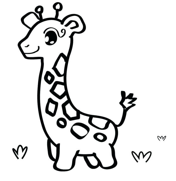 700x723 giraffe drawing easy how to draw a giraffe for kids step giraffe