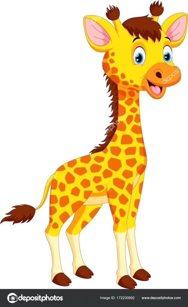 627x1024 giraffe cartoon pictures giraffe cartoon drawing cute giraffe