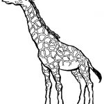 150x150 simple giraffe outline you to paint a picture giraffe this giraffe