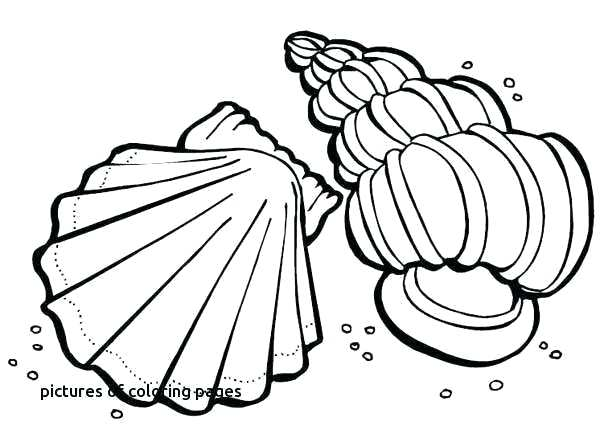 600x442 boxing gloves coloring pages boxing gloves drawing at free