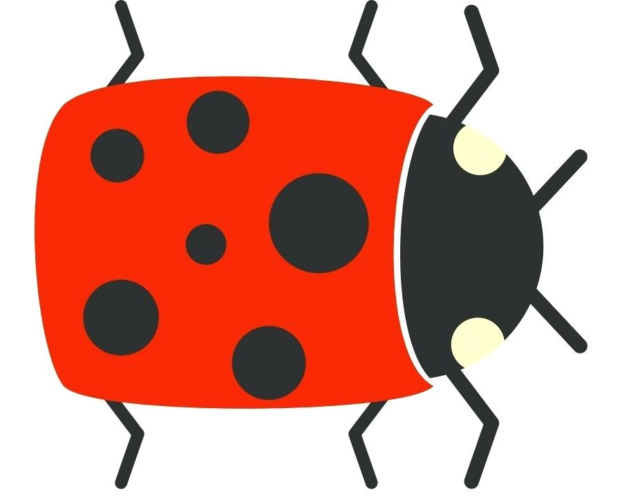 900x720 simple bug drawings simple bug drawing ladybug simple drawings